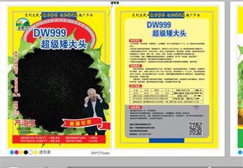 高油王DW999——油葵种子