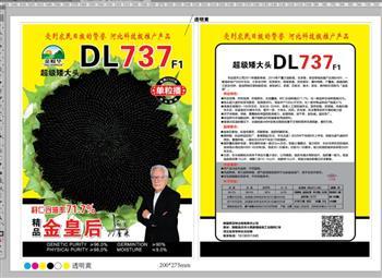 超级矮大头DL737——油葵种子