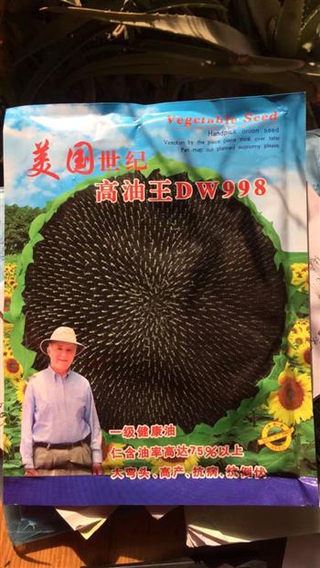 高油王DW998——油葵种子