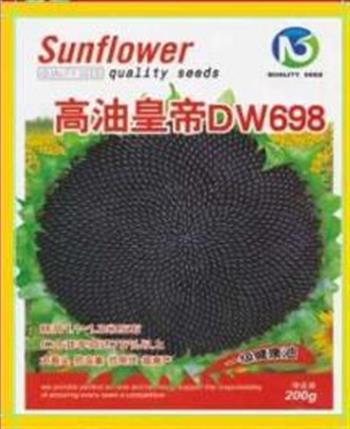 高油皇帝DW968——油葵种子